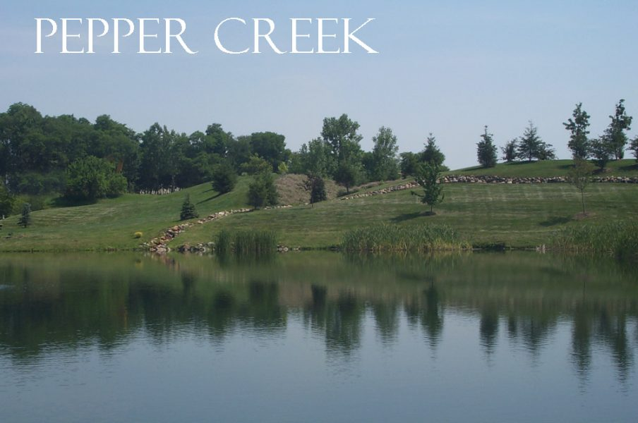 PEPPER CREEK - Exceptional property, exceptional opportunity, estate size acreage.